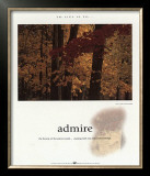 Admire Posters by Francis Pelletier
