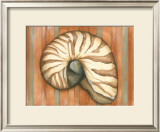Shell on Stripes IV Art by Laura Nathan