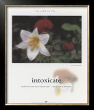 Intoxicate Print by Francis Pelletier