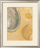Shoreline Shells V Print by Lorraine Vail