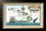 Map of the Hawaiian Islands Art by Steve Strickland