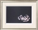 Ballet Slippers Limited Edition Framed Print by Harvey Edwards
