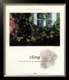 Cling Prints by Francis Pelletier