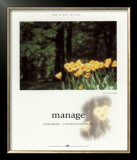 Manage Prints by Francis Pelletier