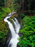 Sol Duc Falls in Olympic National Park, Washington, USA Stampa fotografica di Chuck Haney