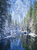 Snow Covered Trees Along Merced River, Yosemite Valley, Yosemite National Park, California, USA Photographic Print by Scott T. Smith
