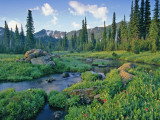 Picnic Creek in the Jewel Basin of the Swan Mountain Range, Montana, USA Photographic Print by Chuck Haney