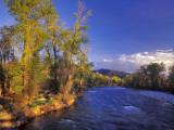 The Gallatin River Near Bozeman, Montana, USA Photographic Print by Chuck Haney