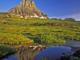 Mt Clements Reflects into Small Pool at Logan Pass in Glacier National Park, Montana, USA Photographic Print by Chuck Haney