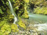 Waterfall Near Graves Creek, Olympic National Park, Washington, USA Photographic Print by Stuart Westmoreland