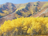 Wellsville Mountains in Autumn, Wasatch-Cache National Forest, Utah, USA Photographic Print by Scott T. Smith