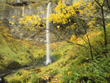 Elowah Falls in Autumn, Columbia Gorge National Scenic Area, Oregon, USA Photographic Print by Stuart Westmoreland
