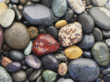 Wet Pebbles, Ruby Beach, Olympic National Park, Washington, Usa Coast Photographic Print by Stuart Westmoreland