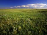 Open Short Grass Prairie North of Malta, Montana, USA Photographic Print by Chuck Haney