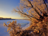 Winter on the Yellowstone River Near Cartwright, North Dakota, USA Photographic Print by Chuck Haney