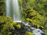 Waterfall over Moss Covered Rocks, Mt Hood National Forest, Columbia Gorge Scenic Area, Oregon, USA Photographic Print by Stuart Westmoreland