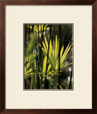 Green Leaves Print by Francois Goudier
