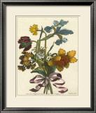 Floral Posy IV Prints by Giovanni Ferrari