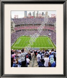 LP Field Framed Photographic Print