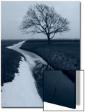 Landscape Photograph, a Winter Scenery in Spanbroek, the Netherlands Plakat af Abdul Kadir Audah