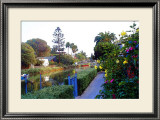 Yellow Roses by Canal Framed Giclee Print by Jack Heinz