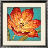 Flame Tulip I Prints by Karen Leibrick