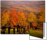 Autumn Scenery with Horses Grazing and Corral, Germany Posters by Abdul Kadir Audah