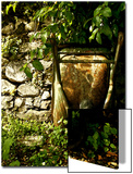 Still Life Composition in Nature with Wheelbarrow Poster by Claire Morgan