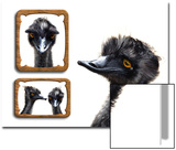 Emu Memories Affiche par Abdul Kadir Audah