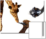 Giraffe, Emu and Offspring Prints by Abdul Kadir Audah