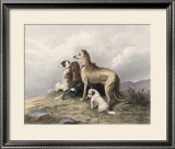 Highland Dogs Poster by Edward Landseer