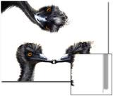 Kissing Emus Affiches par Abdul Kadir Audah