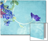 Flower Bouquet Floating in Water Posters by April Bauknight