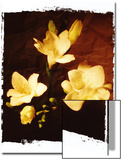 Three Freesia Poster by Abdul Kadir Audah
