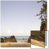 Rocky Beach Scene, Cape Scott, Vancouver, Bc, Canada Posters by Adam Blasberg