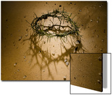 Crown of Thorns with Large Shadow and Pieces of Rock Prints by Joshua Hultquist