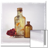 Still Life of a Dry Rose and Bottles Posters by Diane Miller