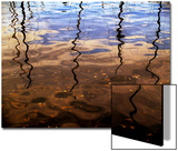 Reflections of Boat Masts in a Lake Posters by Claire Morgan