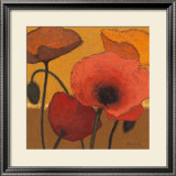Poppy Curry I Prints by Shirley Novak