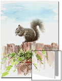 Squirrel Sitting on the Fence Above a Pot of Ivy Prints by Rich LaPenna