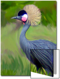 Tufted Crane Painting Prints by Rich LaPenna