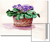 Purple African Violet in Basket Posters by Rich LaPenna