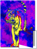 Tiger Endangered Species Prints by Rich LaPenna