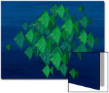 School of Green Triangle Fish on Blue Underwater Background Prints by Rich LaPenna