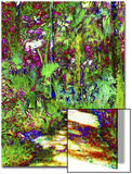 Secret Trail Through Cypress Forest Prints by Rich LaPenna