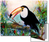 Toucan Sits on Large Branch Prints by Rich LaPenna