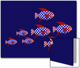 Red, White, and Blue School of Patriot Fish Print by Rich LaPenna