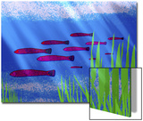 Purple Fish in Calm Blue Water with Seagrass Posters by Rich LaPenna