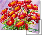 Bouquet of Asters Prints by Rich LaPenna