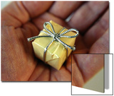 Tiny Present in a Mans Palm Posters by Winfred Evers
